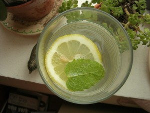 12 WAYS TO FLAVOR YOUR DRINKING WATER WITHOUT REFINED SUGAR,WWW.B12PATCH.COM