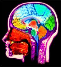 CAN VITAMIN B12 DEFICIENCY CAUSE BRAIN LESIONS? B12 PATCH